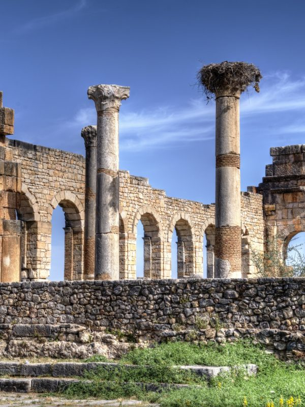 day trip from fez to volubilis