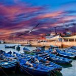 day trip essaouira from marrakech morocco tours 3